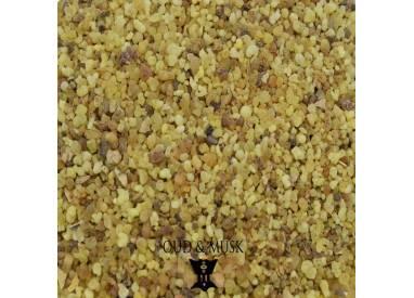 Ethiopia luban Messer - Boswellia papyrifera