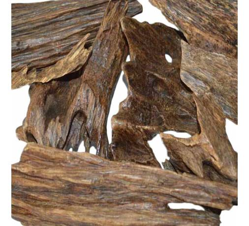 Agarwood Indonesia Super Merauke