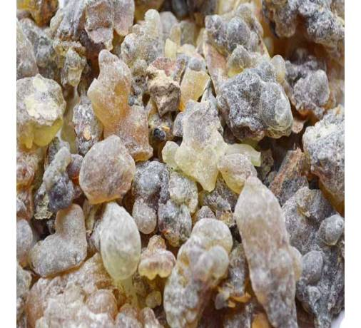 Black Luban Oman - Boswellia Sacra